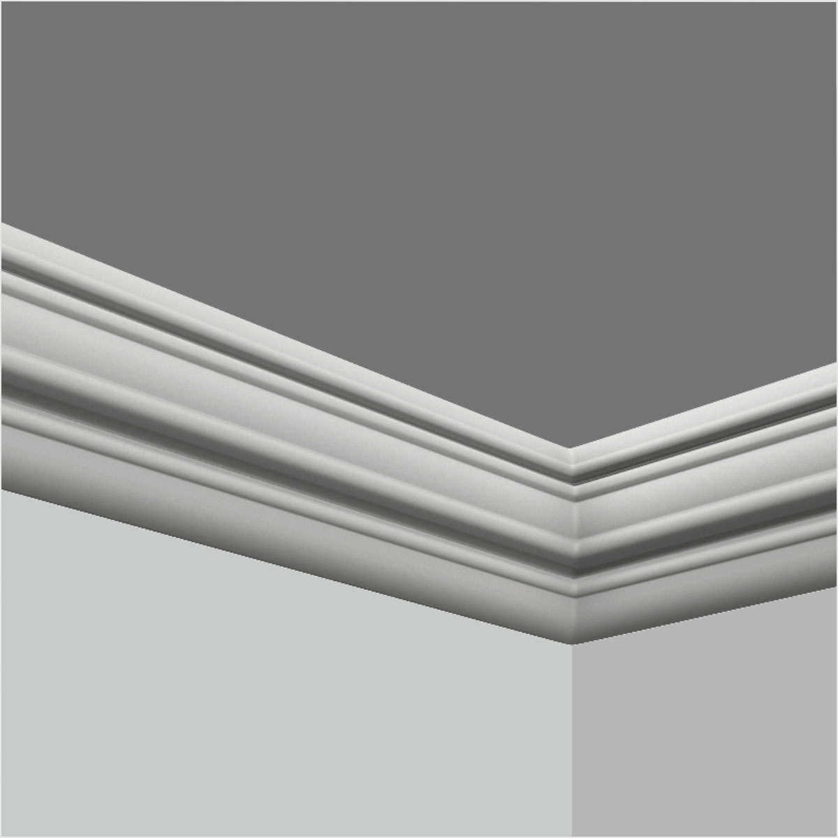 Dining room panel molding and chair rail